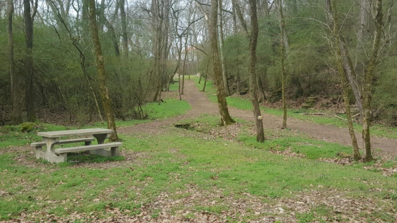 Jogging Trail – TVA