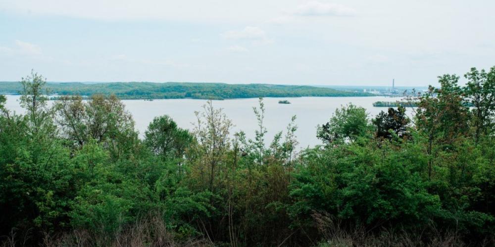 A beautiful view of Kentucky Lake. – Cari Griffith