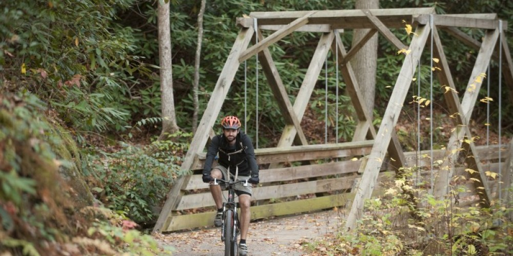 Rhododendron Bike Trail – TN State Photo Services