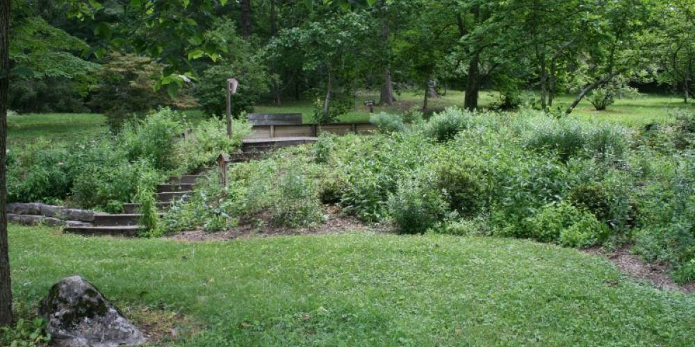 A beautiful shady trail at the UT Arboretum – ORCVB