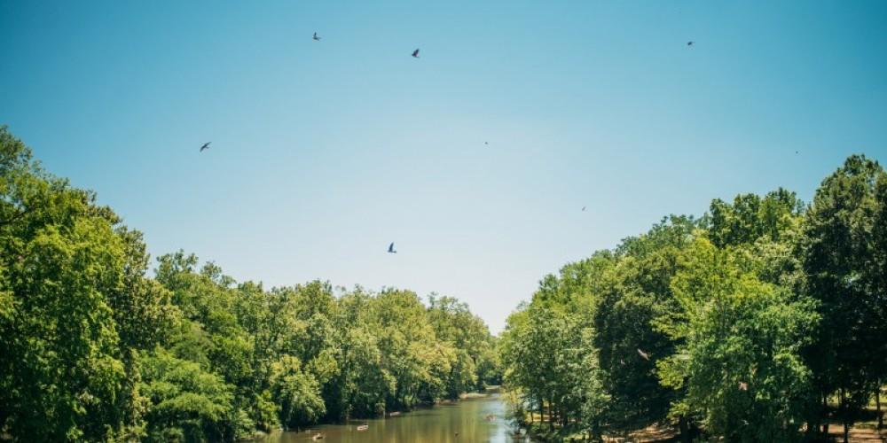 Buffalo River Resort – Cari Griffith