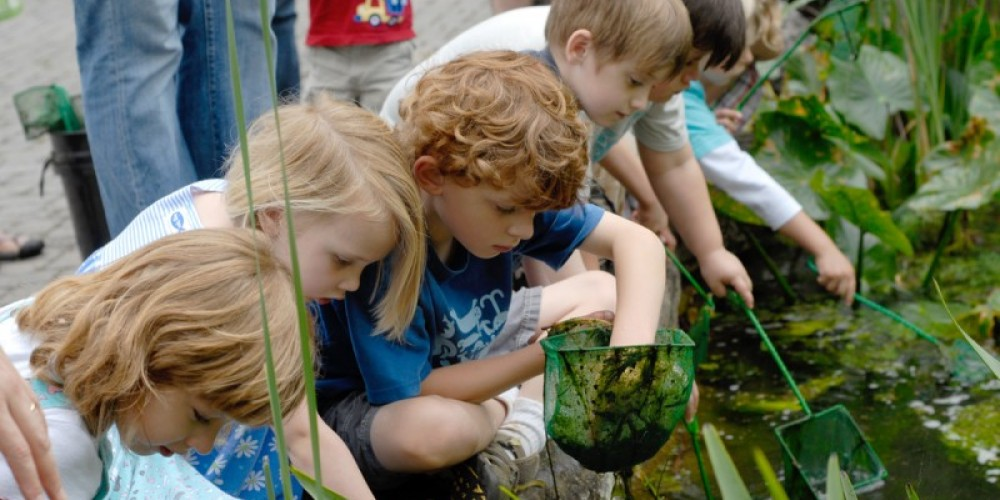 Young naturalists at the Universal Pond. – Bruce Cole