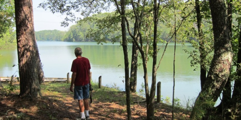 Beaufiful lake view -  typical many trail branches – Lou Livengood