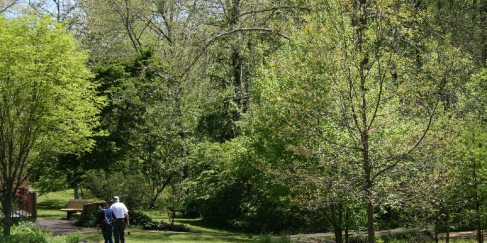 Enjoy the many plants and flowers along many of the trails – ORCVB
