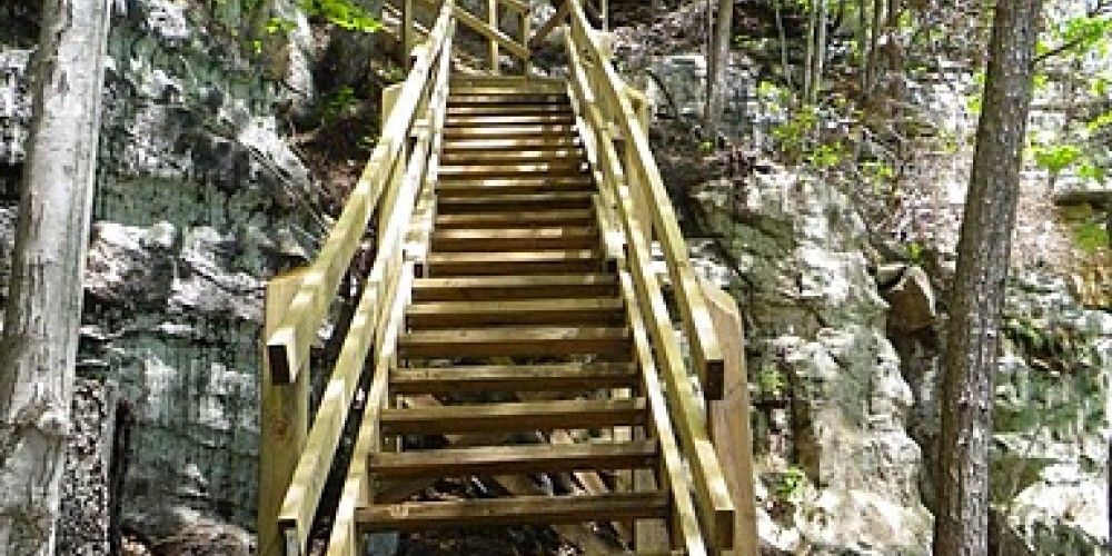 Ladders going up the escarpment along the Cumberland Trail – Erin Ouzts