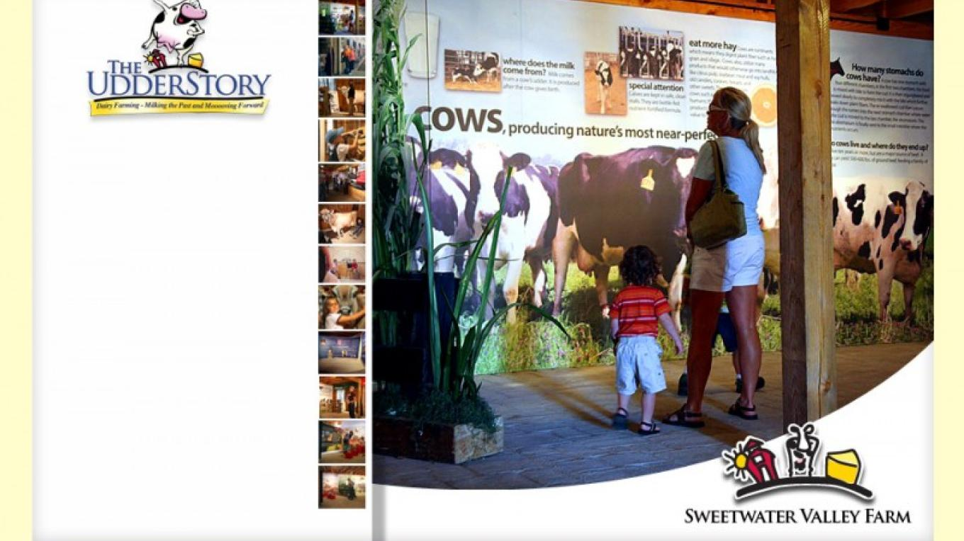 Cow wall in The Udderstory Barn