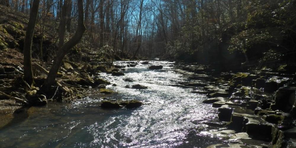 Bobo Creek at Short Springs Small Wild Area – TVA