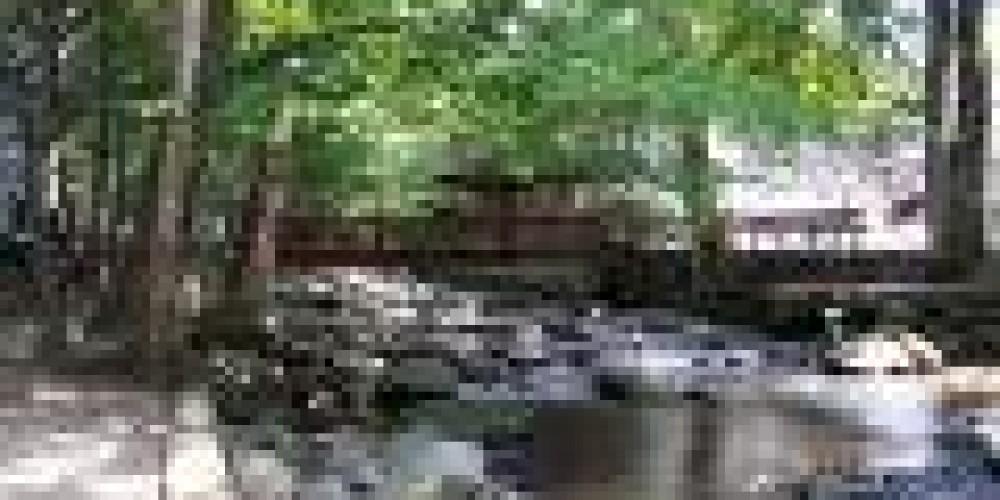 Roaring Fork Creek at Carr's – Amy H McCarter