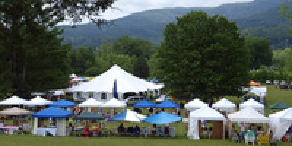 Louie Bluie Festival at Cove Lake Stat Park in Caryville – Louie Bluie Festival Photo