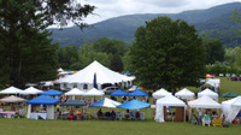 Louie Bluie Festival at Cove Lake Stat Park in Caryville – Louie Bluie Festival Photo