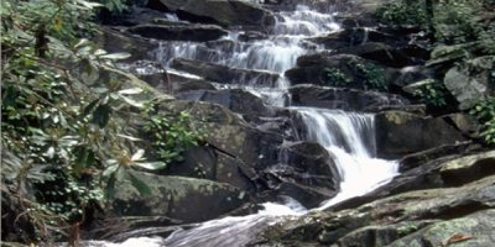 Stream on Fort Mountain – Georgia State Parks
