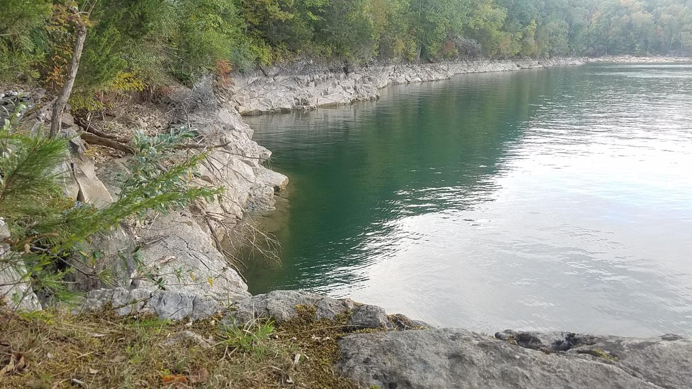 Loyston Sea area of Norris Lake. – Mark Engler