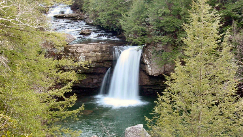 Savage Falls – Eric Dempsey