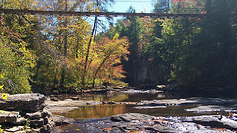 Footbridge over Cane Creek