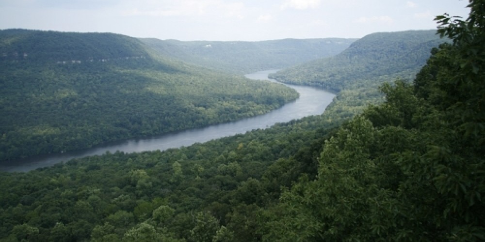 View of the Tennessee River Gorge from Snoopers Rock in Prentice Cooper State Forest – David Rose