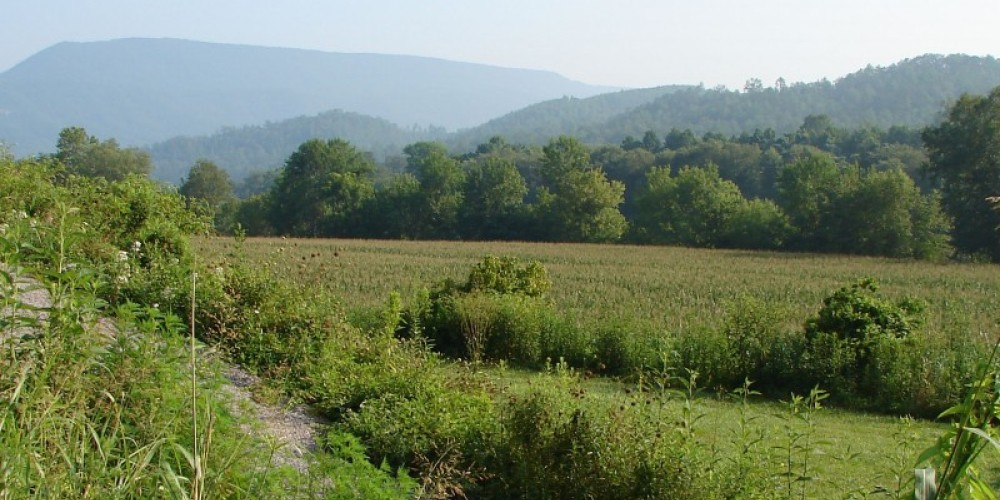 Mountains form a backdrop for farmland that has been dedicated as a conservation easement. – Ingrid Buehler
