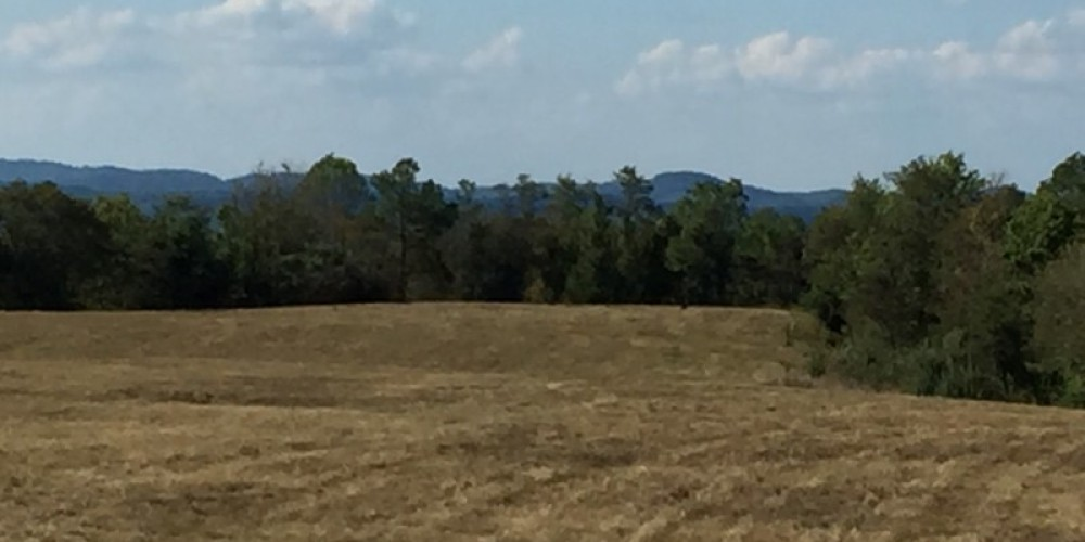 View from the Elk Tower off the TWRA trails