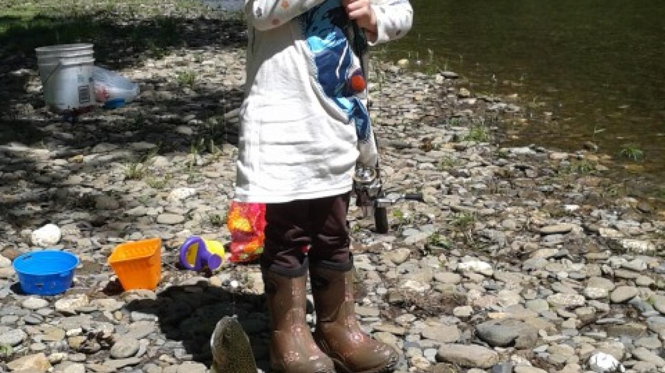 KIds fishing on Citico Creek – Bob or Delores Sowders