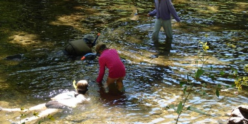 Snorkeling on Citico – Delores Sowders