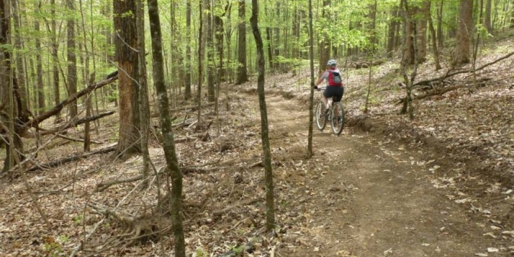 Several Loyston Trails offer easy-difficult mountain biking opportunities – TVA