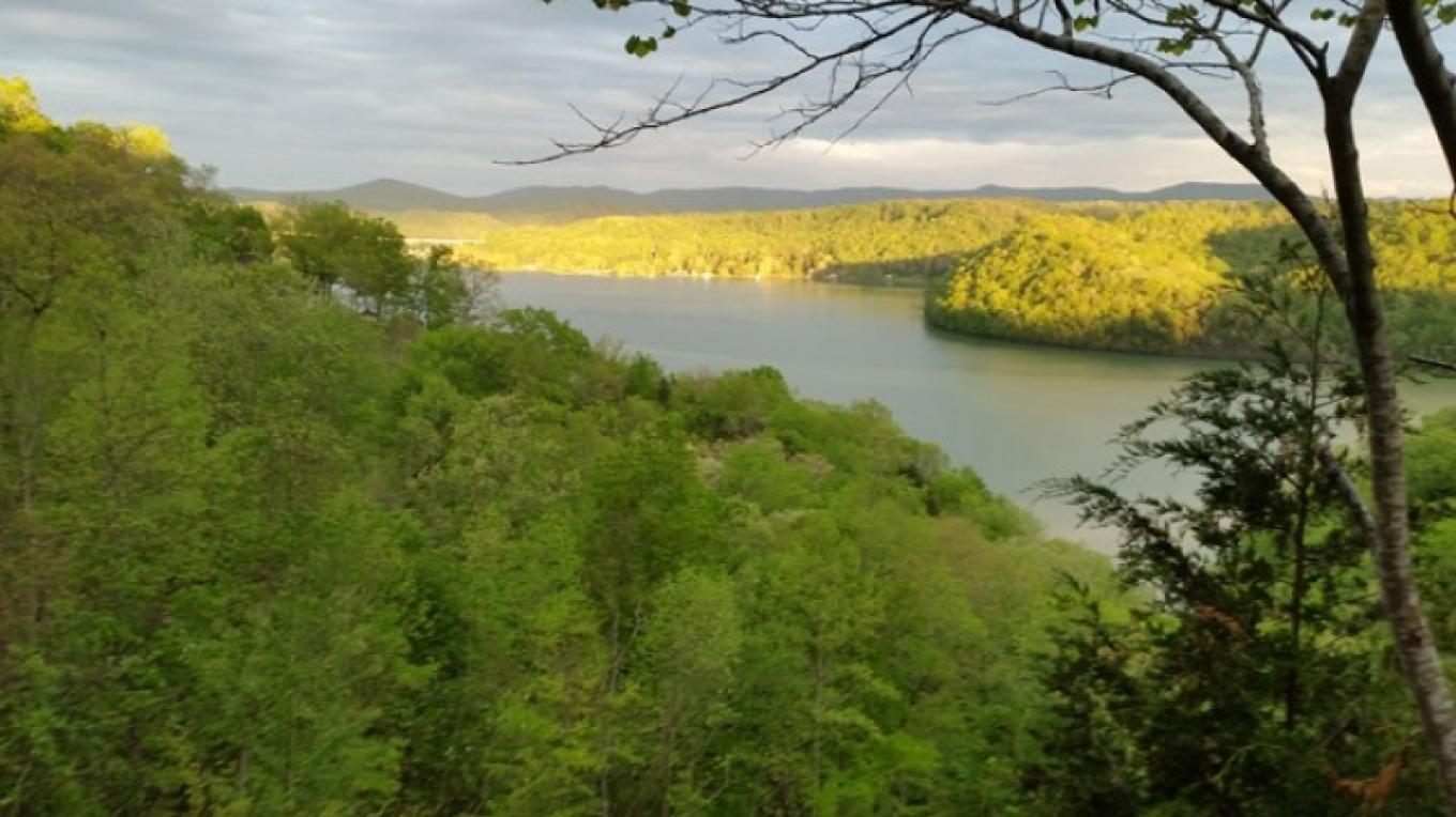 Dale Hallow Lake cabins in Byrdstown, TN. Plan and book directly with the owner.