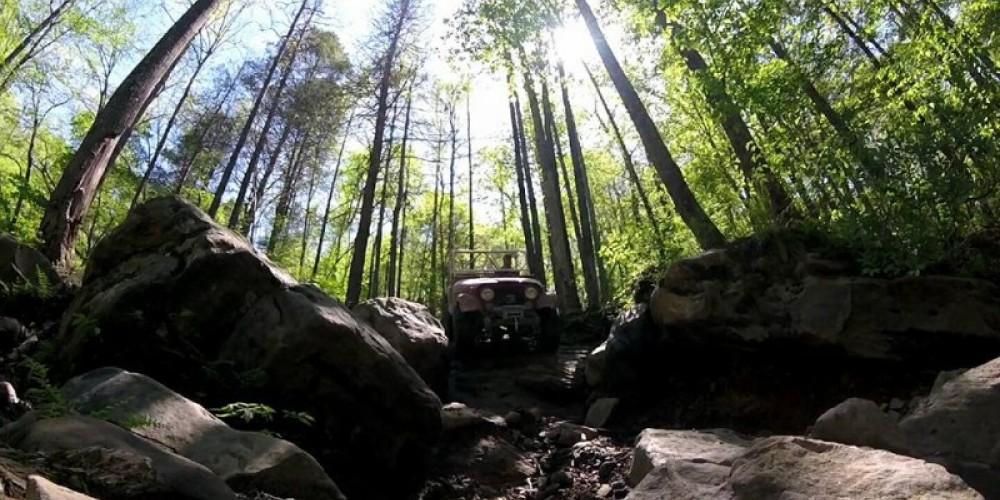 Jeep Fun in the Sun!