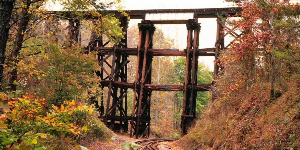 Train Trellis – Jim Caldwell