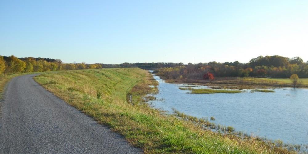 Greenway path and wetlands – Scott Somershoe