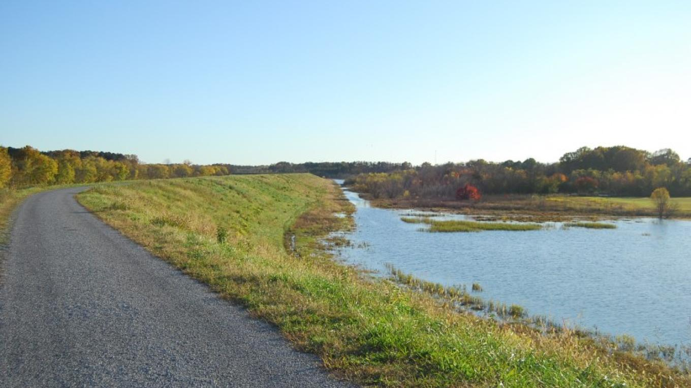 Greenway path and wetlands – Scott Somershoe