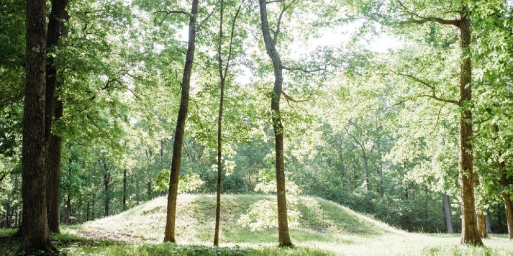 Shiloh Indian Mounds – Cari Griffith