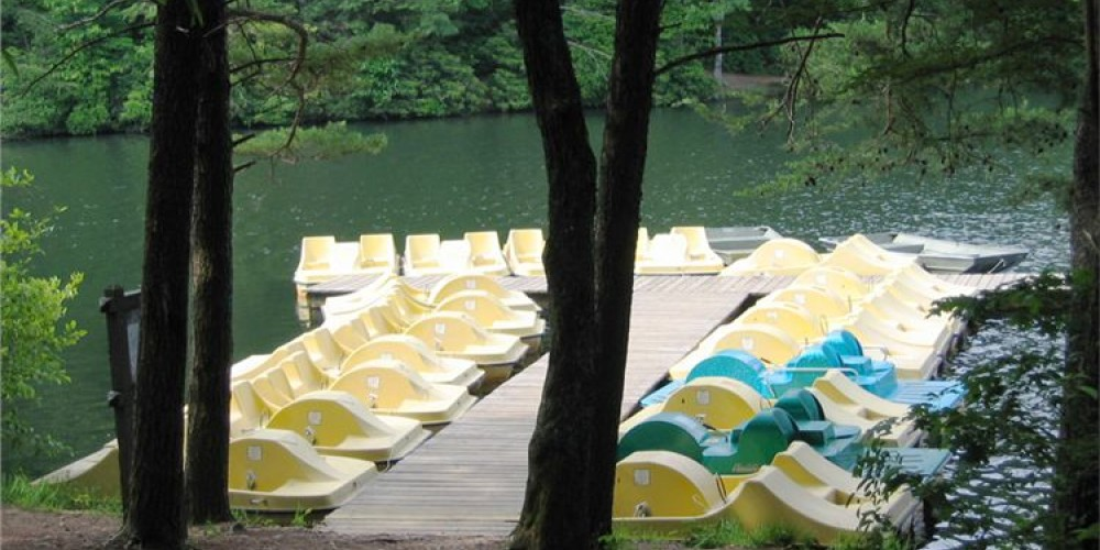 Pedal Boat Rentals – Georgia State Parks
