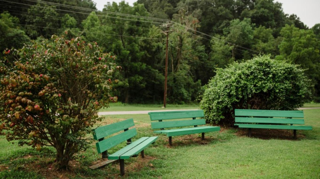 Have a seat and enjoy the some time in the park. – Angie Neilson