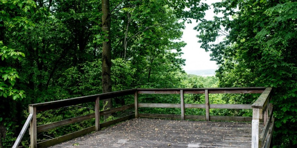 Besides hiking and walking, birding, geocaching, swimming, fishing from the bank, and picnicking are all popular with visitors to the park. – Cari Griffith
