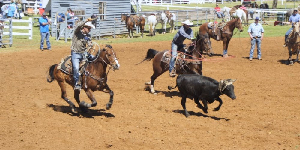 Some of the nation's top calf roping teams will showcase their skills April 21-22 in Tuscumbia, AL. – Dennis Sherer