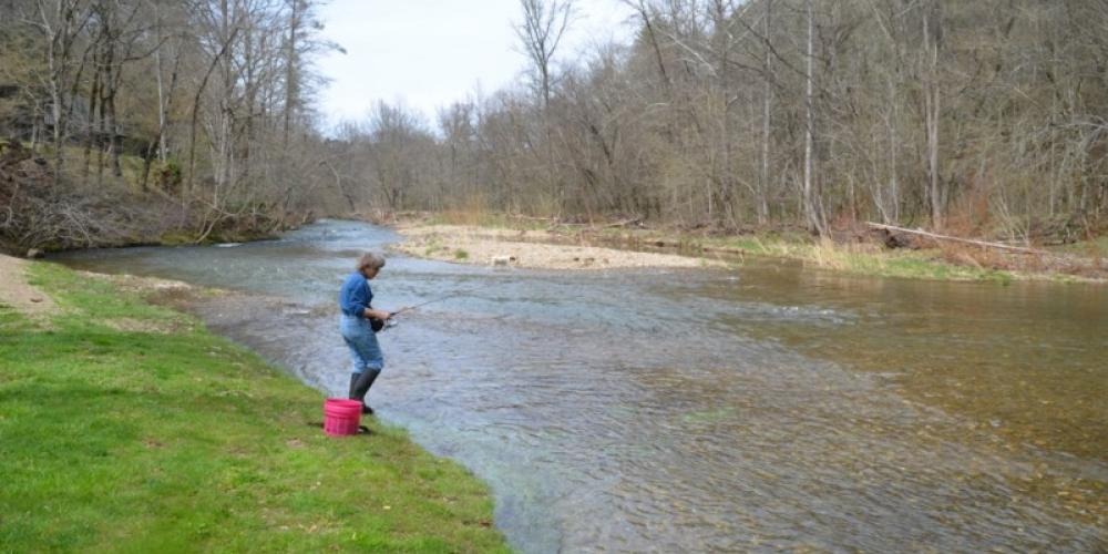 Trout fishing on Citico – Bob or Delores Sowders