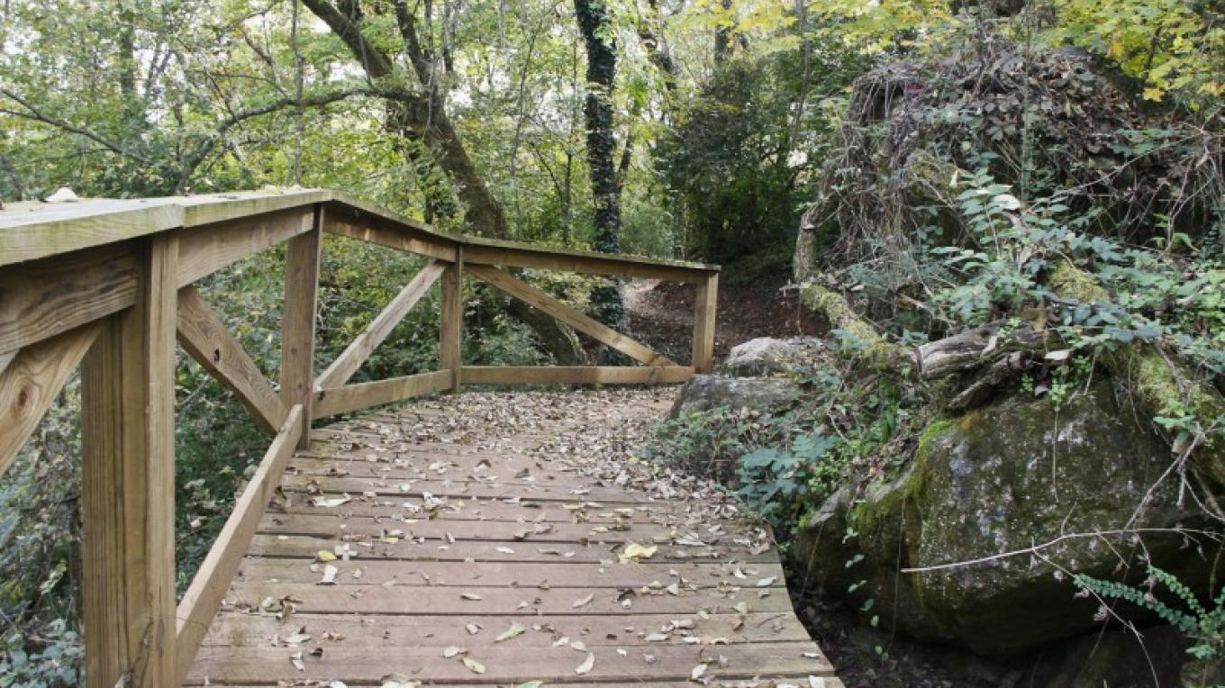Amber Trail at Meads Quarry – Elle Colquitt
