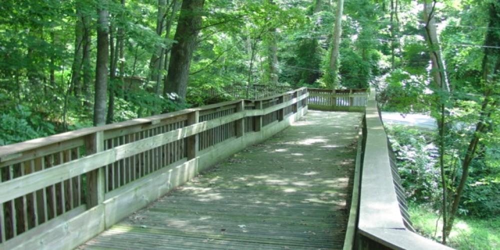 Greenway Wooden Bridge – Steve Roark