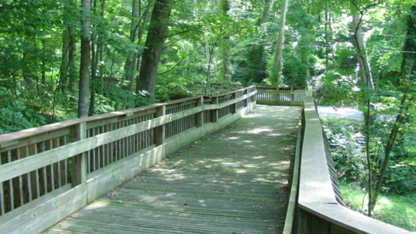 Greenway Wooden Bridge – Steve Roark