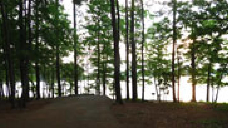 Lake scene – Corps of Engineers
