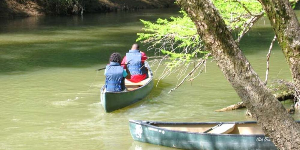 Canoeing on Bear Creek, MS – Tishomingo Tourism