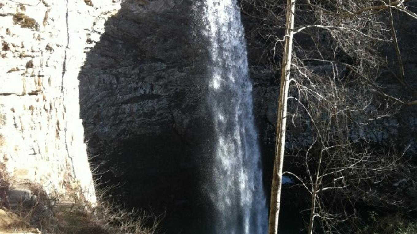 Ozone Falls State Natural Area, January 2011 – Liz Albertson
