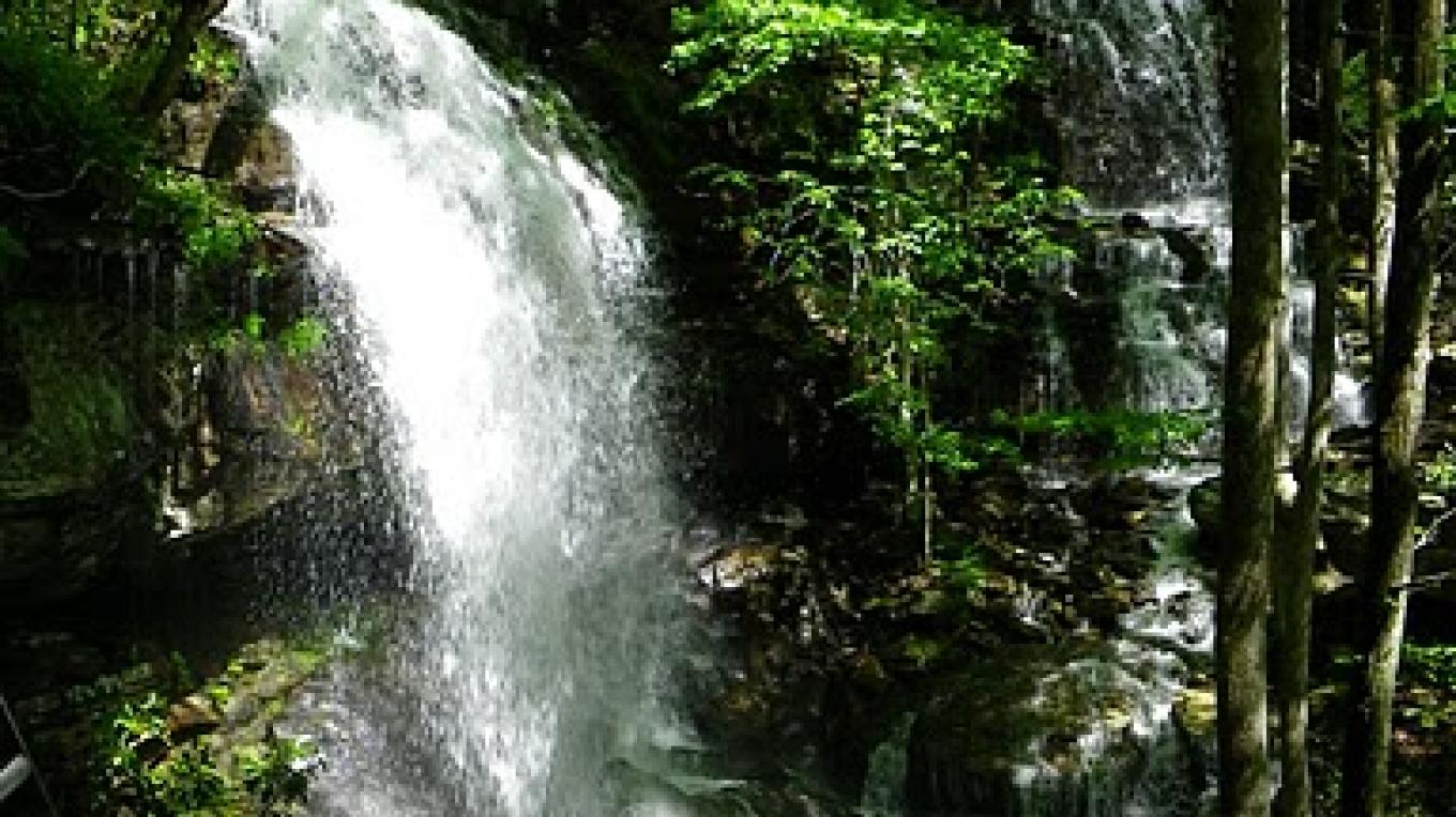 Double waterfalls along the Cumberland Trail – Erin Ouzts