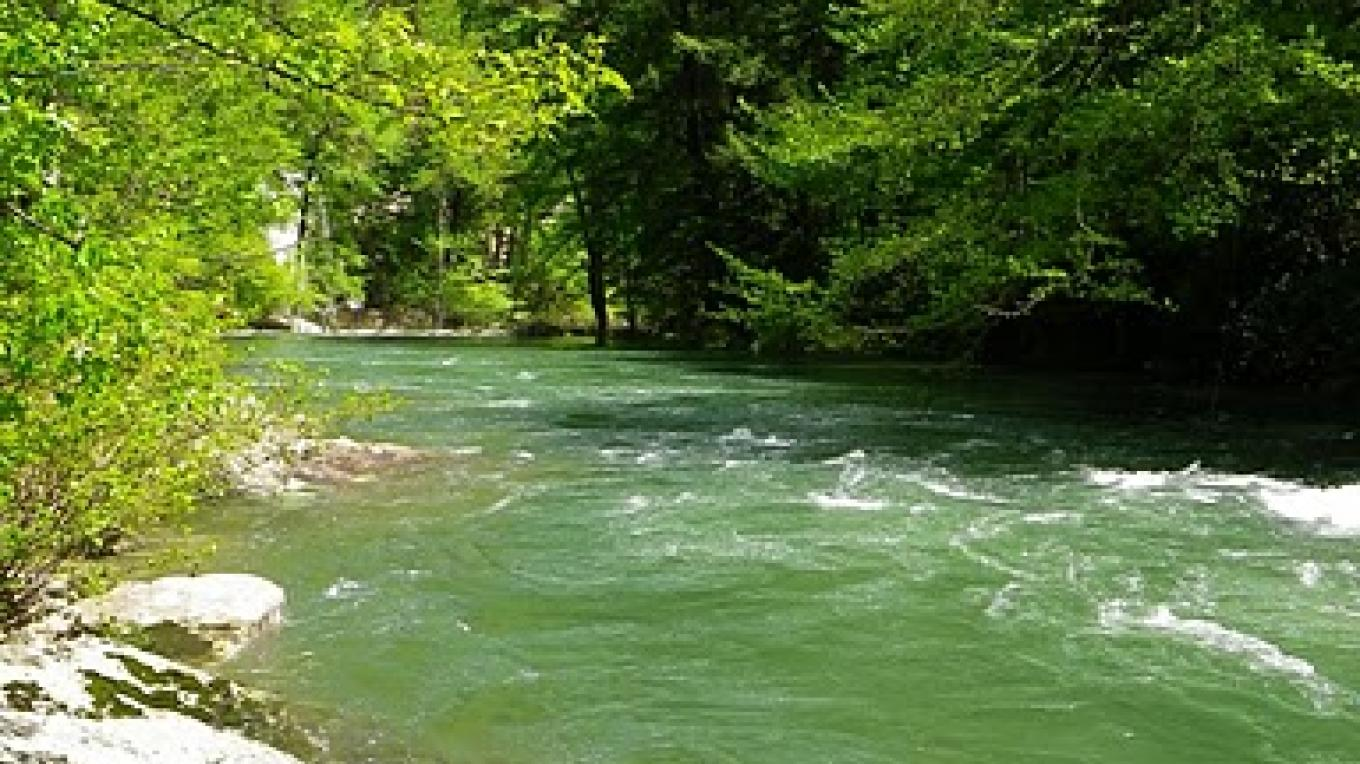 The Green Hole, a swimming hole along the Cumberland Trail – Erin Ouzts