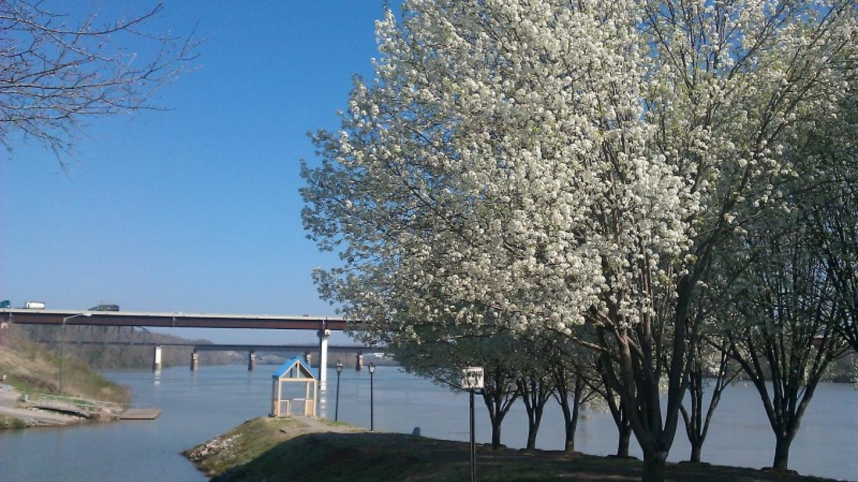 Loudon Riverfront – Lynda Randolph