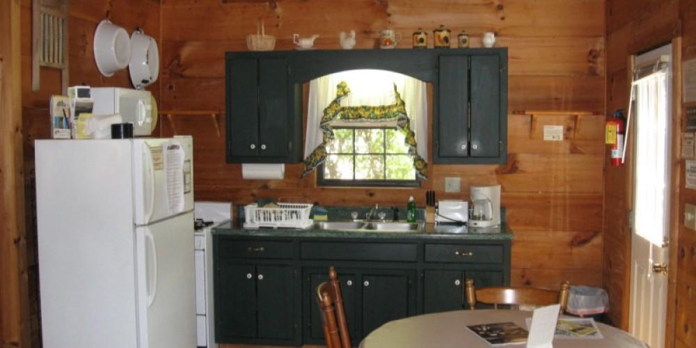 Kitchen Cabin #2 – Patricia Scott