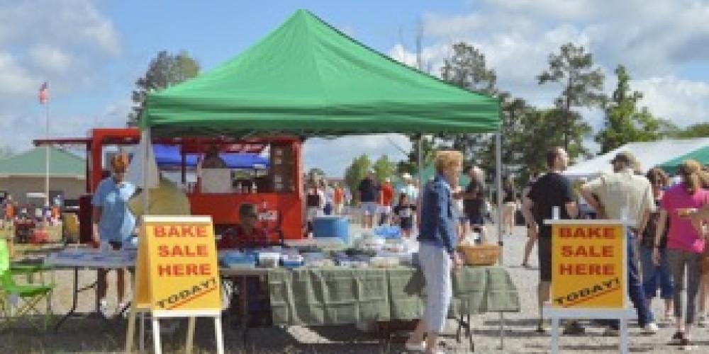 Arley Day Festival