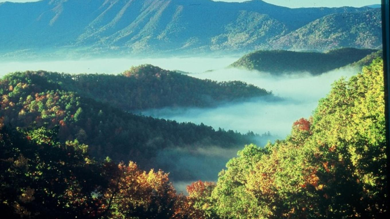 """Smoky Mountain scene with foggy """"smoke"""". – Townsend Visitors Center"""